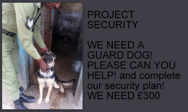 GUARD DOG NEEDED