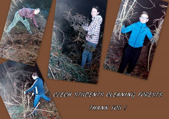 STUDENTS FROM CZECH REPUBLIC RAISE MONEY BY CLEANING FORESTS